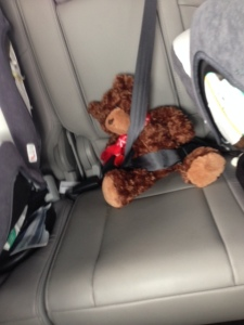 Rex insisted on strapping his teddy bear in. Cute, right?